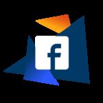 Logo Facebook Furet Company