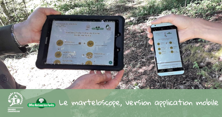 furet-company-onf-office-national-des-forets-application-sim-foret