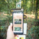 furet-company-exploration-famille-smartphone-avesnois